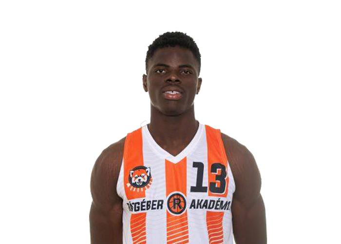 James Ugochukwu NNAJI